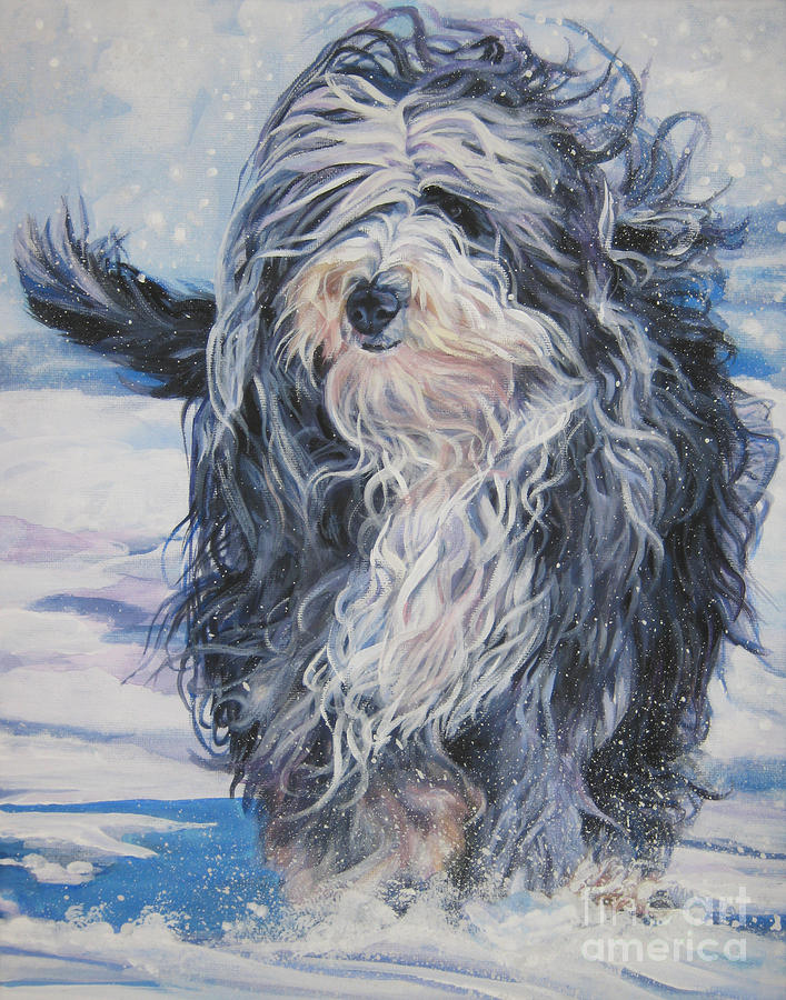 Bearded Collie In Snow Painting  - Bearded Collie In Snow Fine Art Print