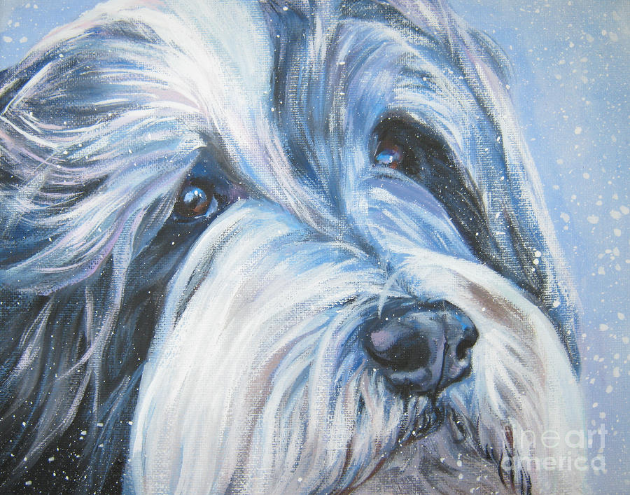Bearded Collie Up Close In Snow Painting  - Bearded Collie Up Close In Snow Fine Art Print