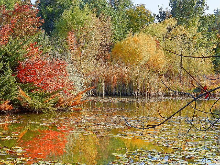 beautiful fall scenic view - photo #18