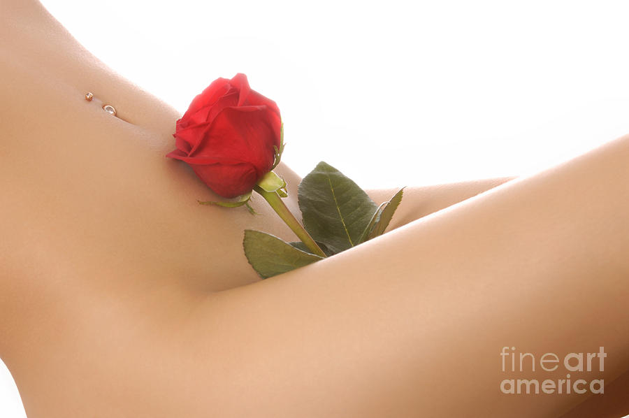 Beautiful Female Body Photograph  - Beautiful Female Body Fine Art Print