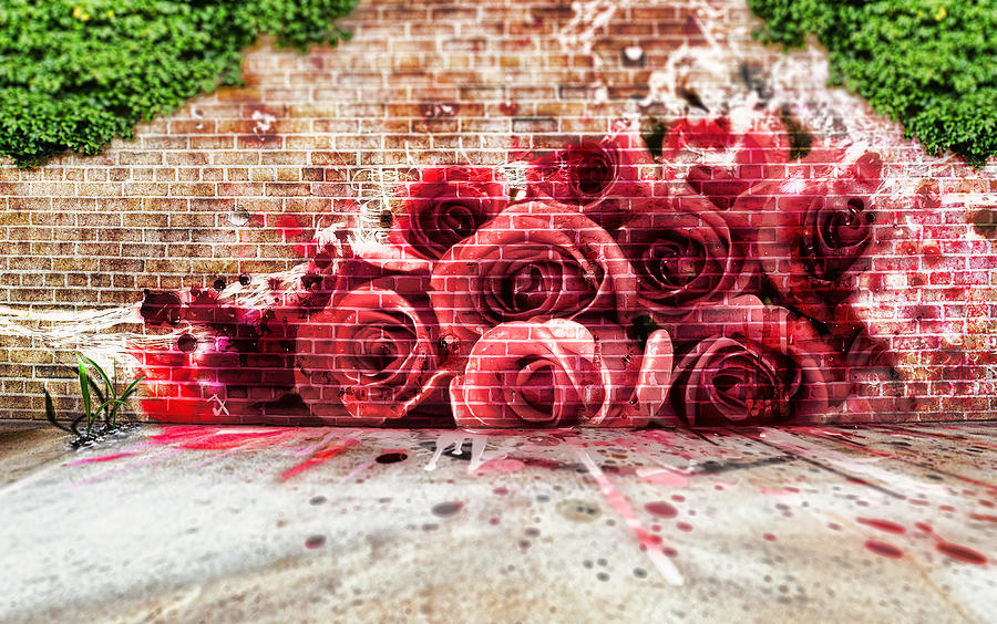 Beautiful Graffiti Photograph: fineartamerica.com/featured/beautiful-graffiti-adam-vance.html