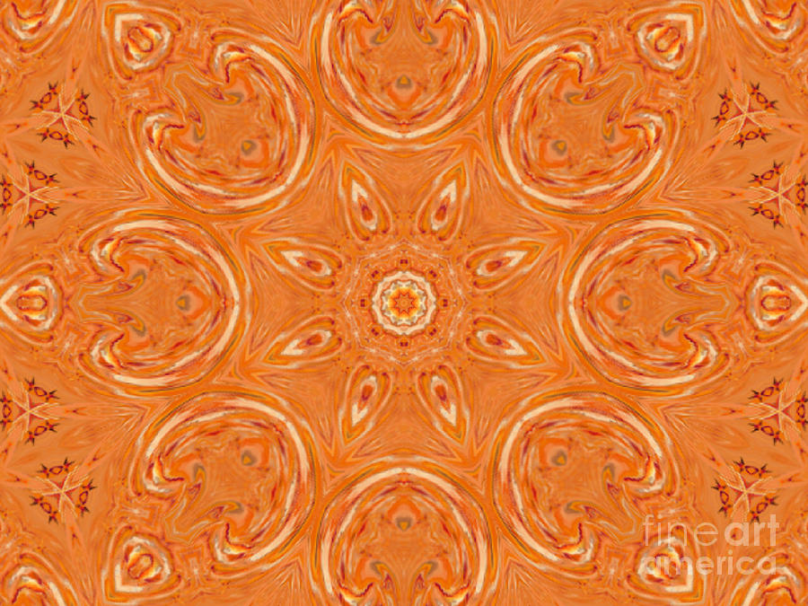 Beautiful Orange Digital Art
