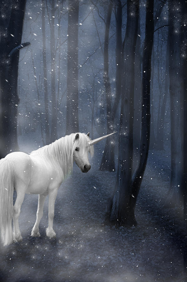 Beautiful Unicorn In Snowy Forest Photograph  - Beautiful Unicorn In Snowy Forest Fine Art Print