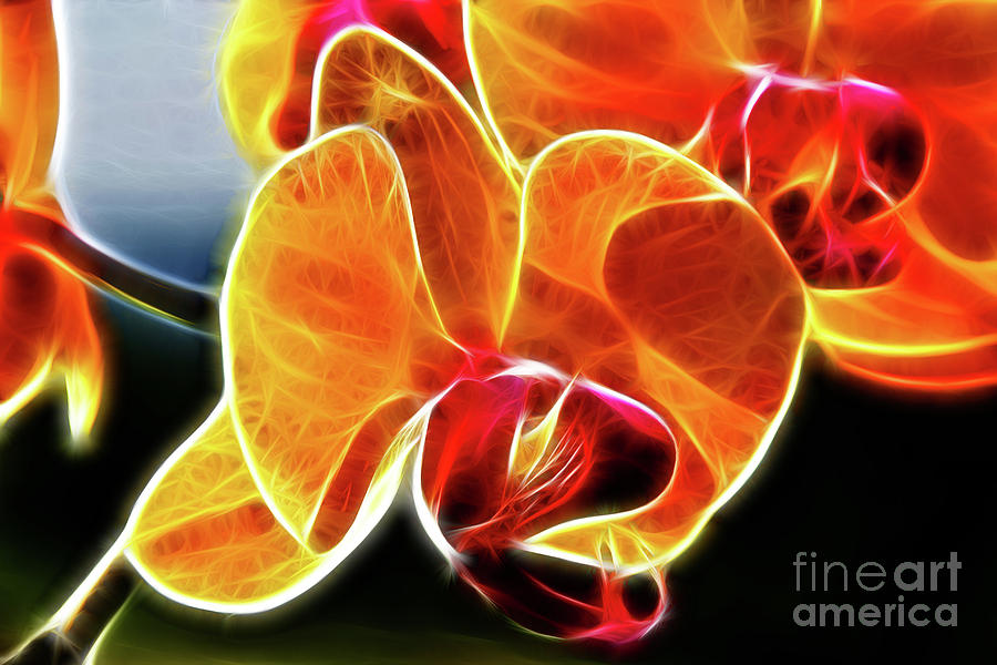Beautiful Yellow Orchid Digital Art  - Beautiful Yellow Orchid Fine Art Print