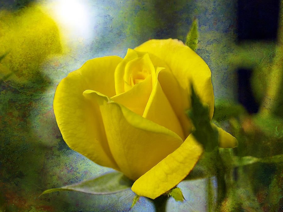 J Larry Walker Digital Art - Beauty Of A Yellow Rose by J Larry Walker