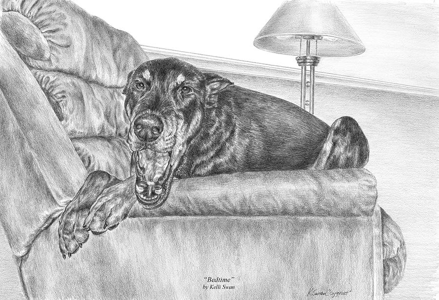 Bedtime - Doberman Pinscher Dog Art Print Drawing