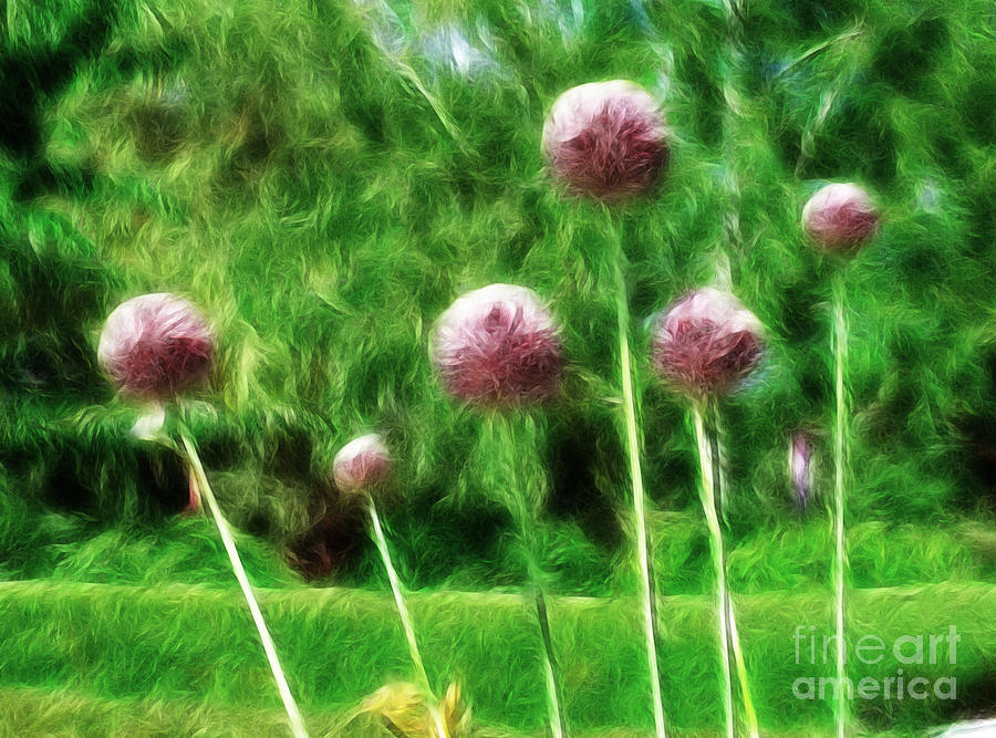 Bee Lollipops Painting  - Bee Lollipops Fine Art Print