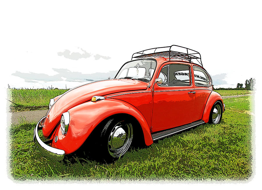 Beetle Photograph  - Beetle Fine Art Print