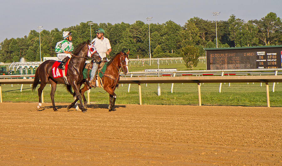 Horse Photograph - Before The Race by Betsy C Knapp