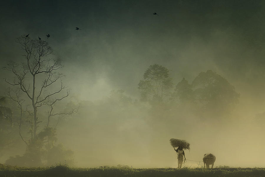 Indonesia Photograph - Before The Sun Goes Home by Harry Sulistio