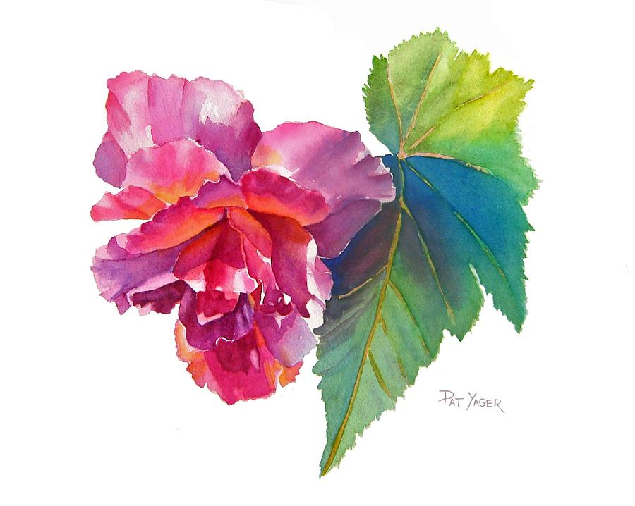 Begonia Watercolor Painting  - Begonia Watercolor Fine Art Print