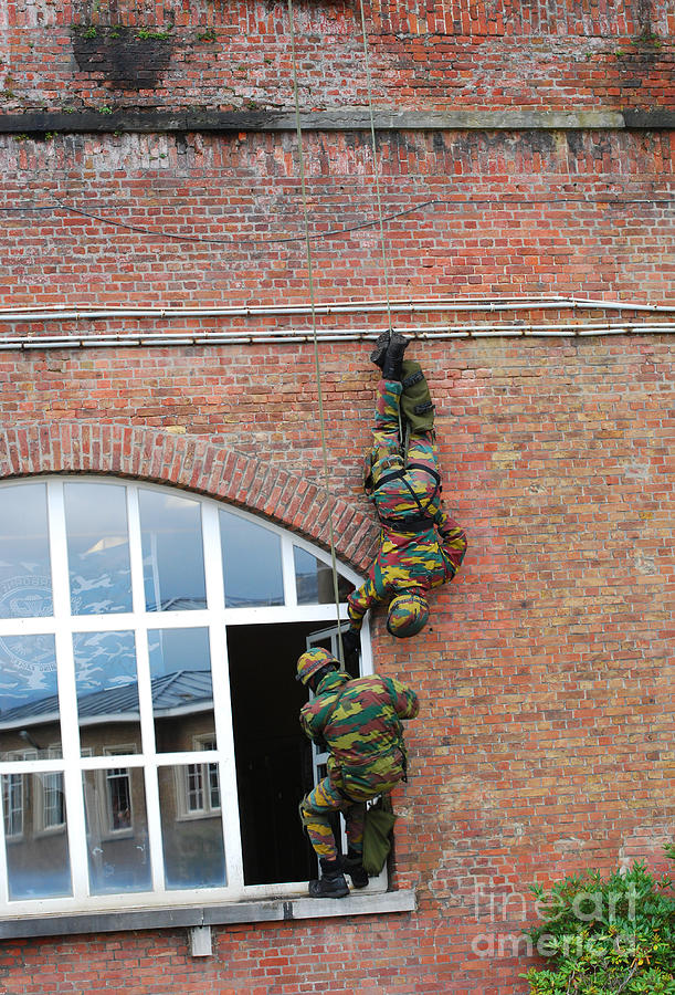Belgian Paratroopers Rappelling Photograph