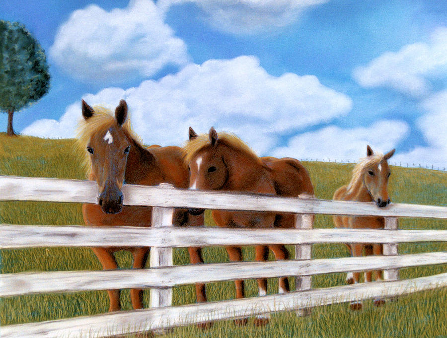 Belgians At Pasture Pastel  - Belgians At Pasture Fine Art Print