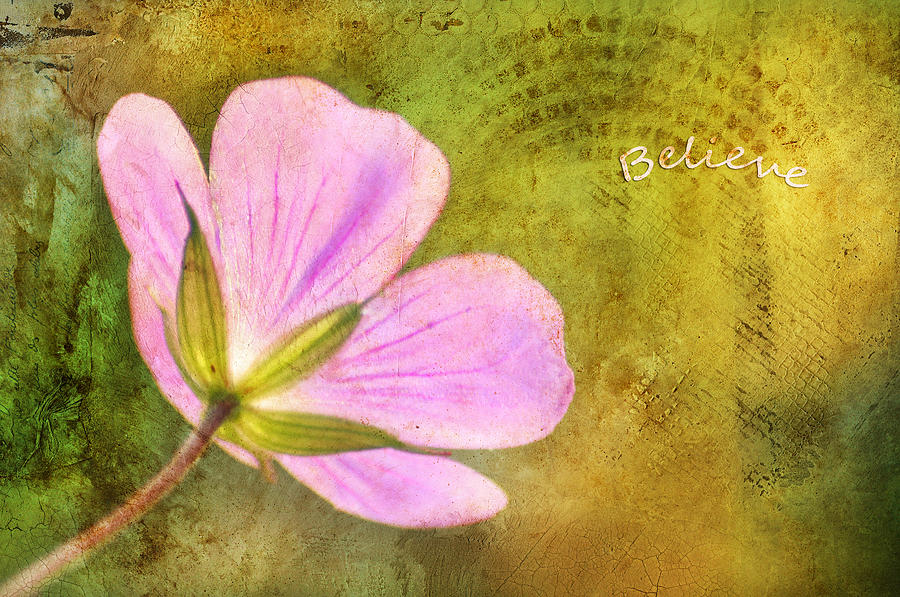 Believe Photograph  - Believe Fine Art Print