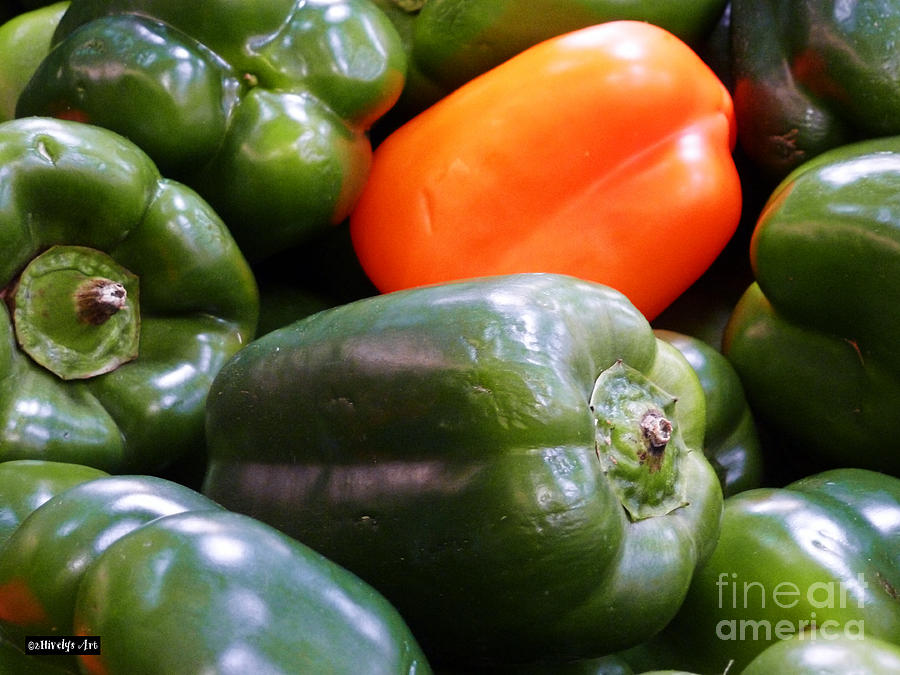 Bell Peppers Photograph