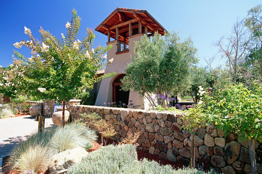 Bell Tower Of St Francis Winery Photograph