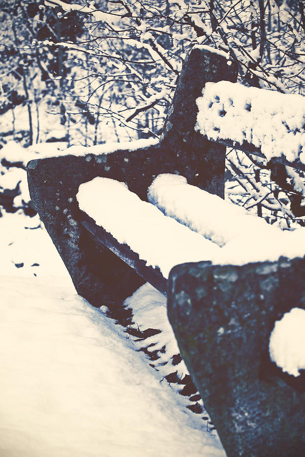 Bench With Snow Photograph  - Bench With Snow Fine Art Print