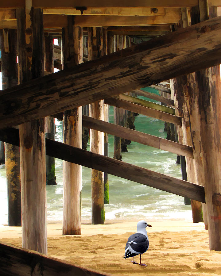 Beneath The Pier Photograph  - Beneath The Pier Fine Art Print