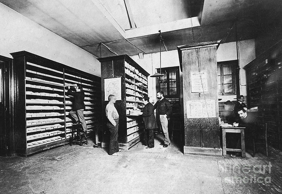 Bertillons Filing System, 19th Century Photograph