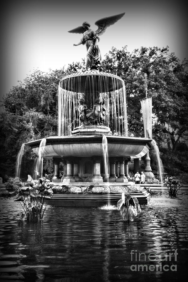 Bethesda Fountain Photograph