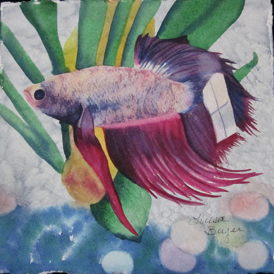Betta painting by teresa beyer for Betta fish painting