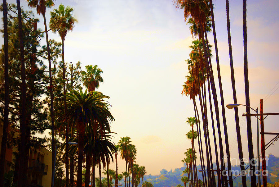 Beverly Hills Photograph - Beverly Hills In La by Susanne Van Hulst