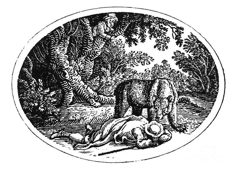 Bewick: Man And Bear Photograph