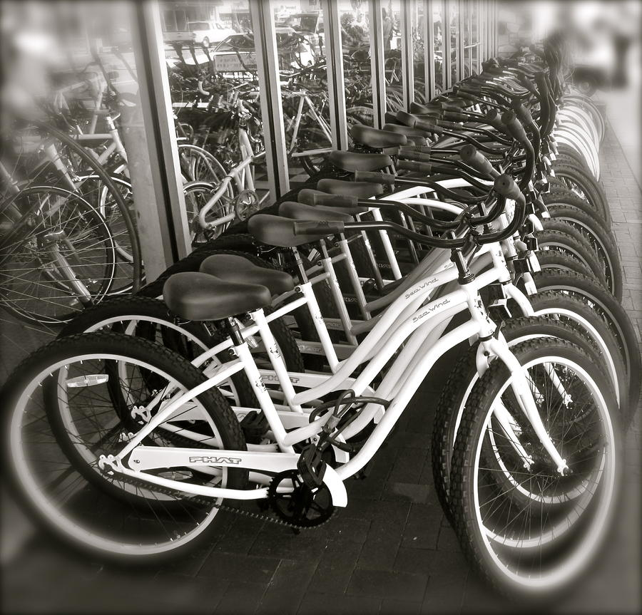 Bicycles In Belmont Shore Photograph