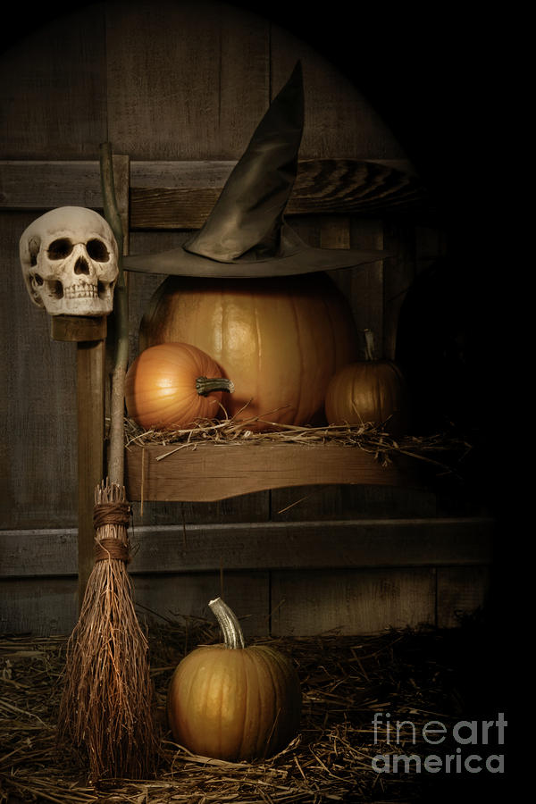 Big Pumpkin With Black Witch Hat And Broom Photograph