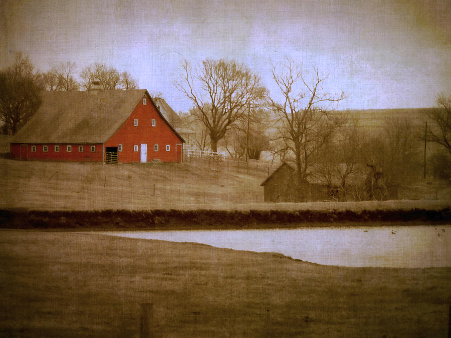 Big Red Photograph  - Big Red Fine Art Print