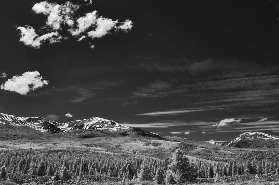 Big Sky And Cotton Candy Photograph