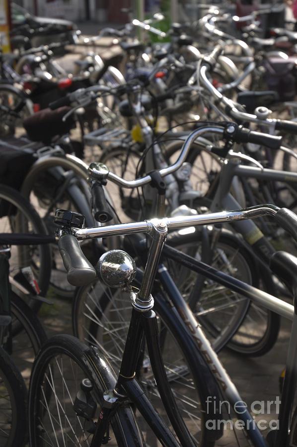 Bikes Bikes Bikes Photograph