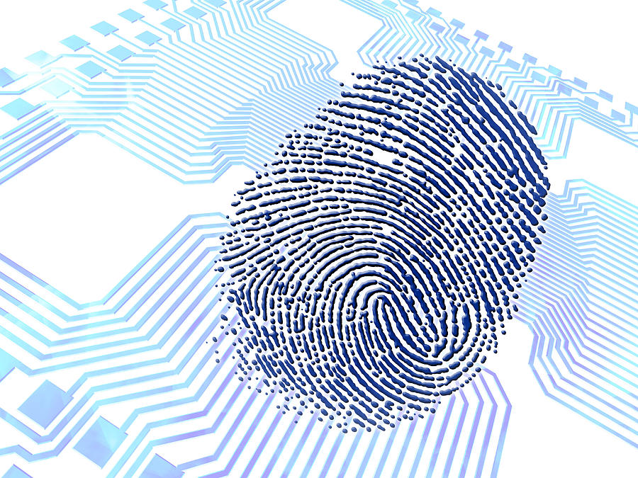 Biometric Fingerprint Scan, Artwork Photograph  - Biometric Fingerprint Scan, Artwork Fine Art Print