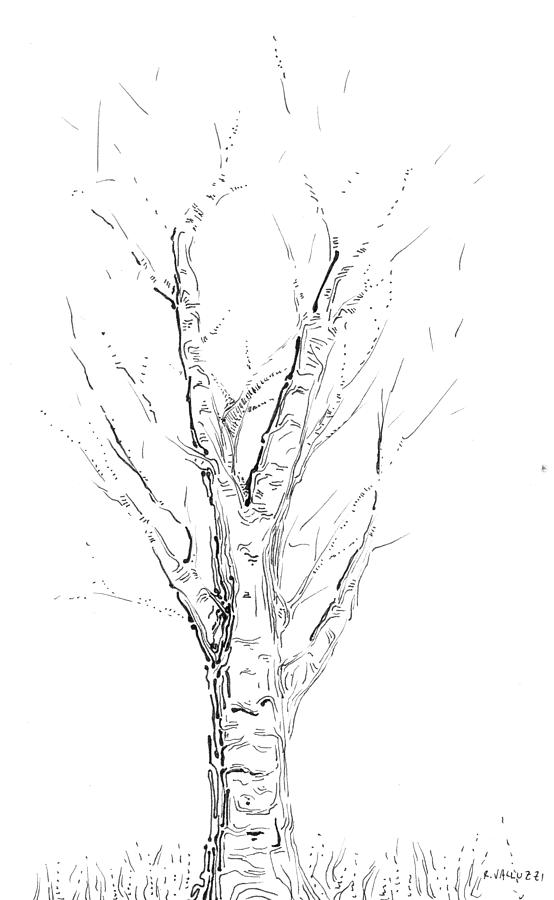 Birch Abstraction Study Drawing  - Birch Abstraction Study Fine Art Print