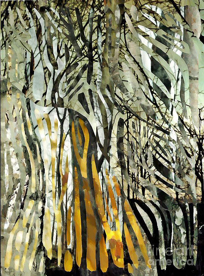 Birch Forest Mixed Media  - Birch Forest Fine Art Print