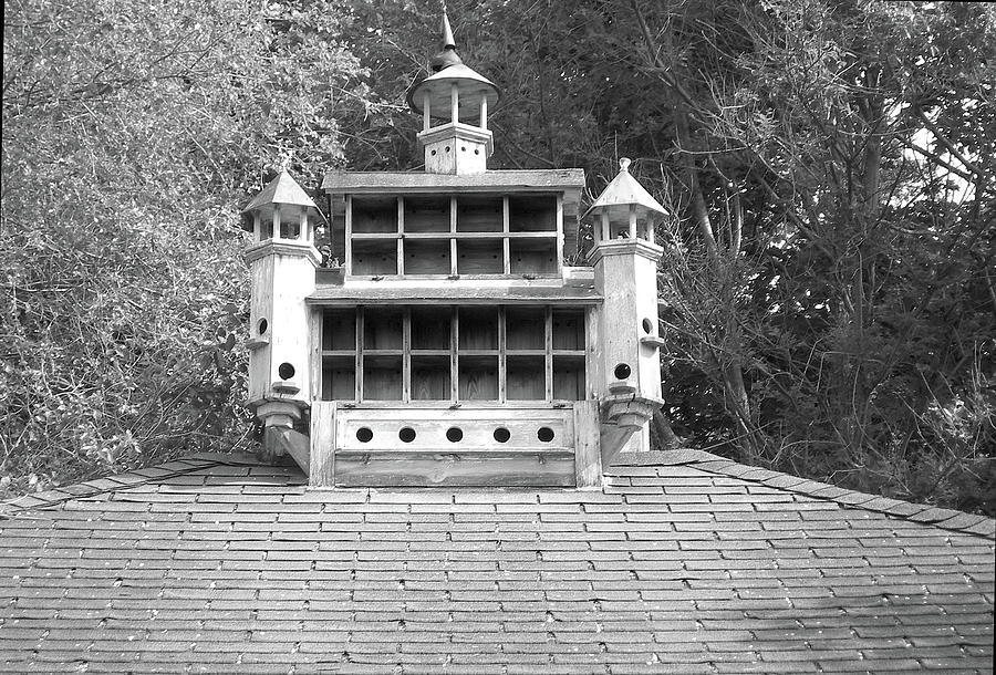 Birdhouse Cupola By Randy Rosenberger