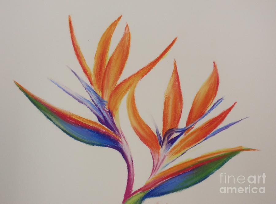 birds of paradise ii painting by tatjana popovska