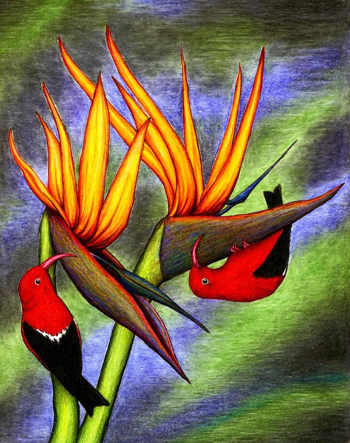 Birds On Birds Drawing  - Birds On Birds Fine Art Print