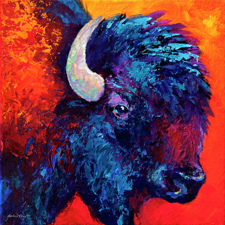 Bison Head Color Study II Painting  - Bison Head Color Study II Fine Art Print