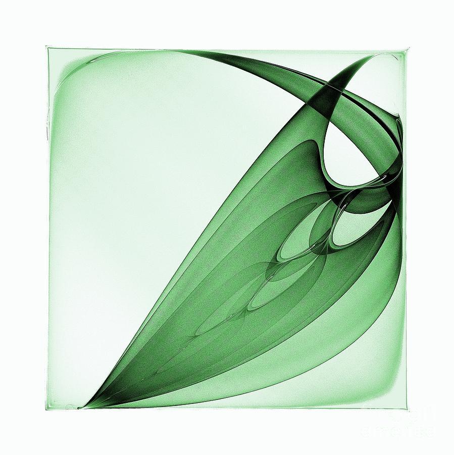 Bizarre Leaf Digital Art