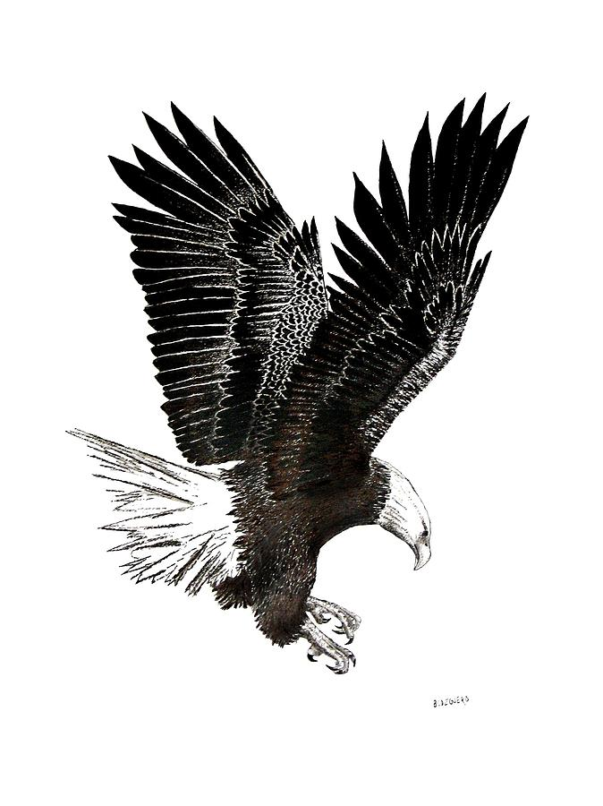 Bald Eagle Black And White Paintings Pictures to Pin on ...