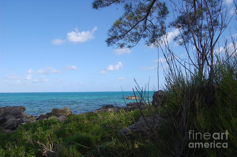 Black Bay Beach Bermuda Photograph