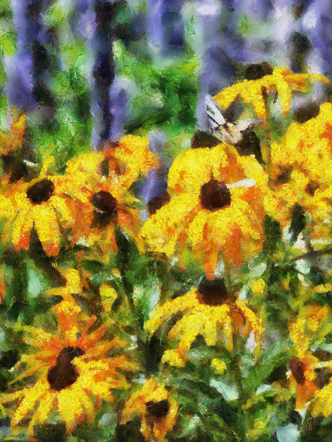 Black Eyed Susans II Painting by Jai Johnson
