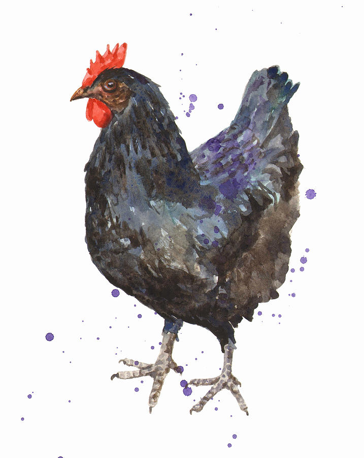 Black Hen - Rustic Kitchen Art Painting by Alison Fennell