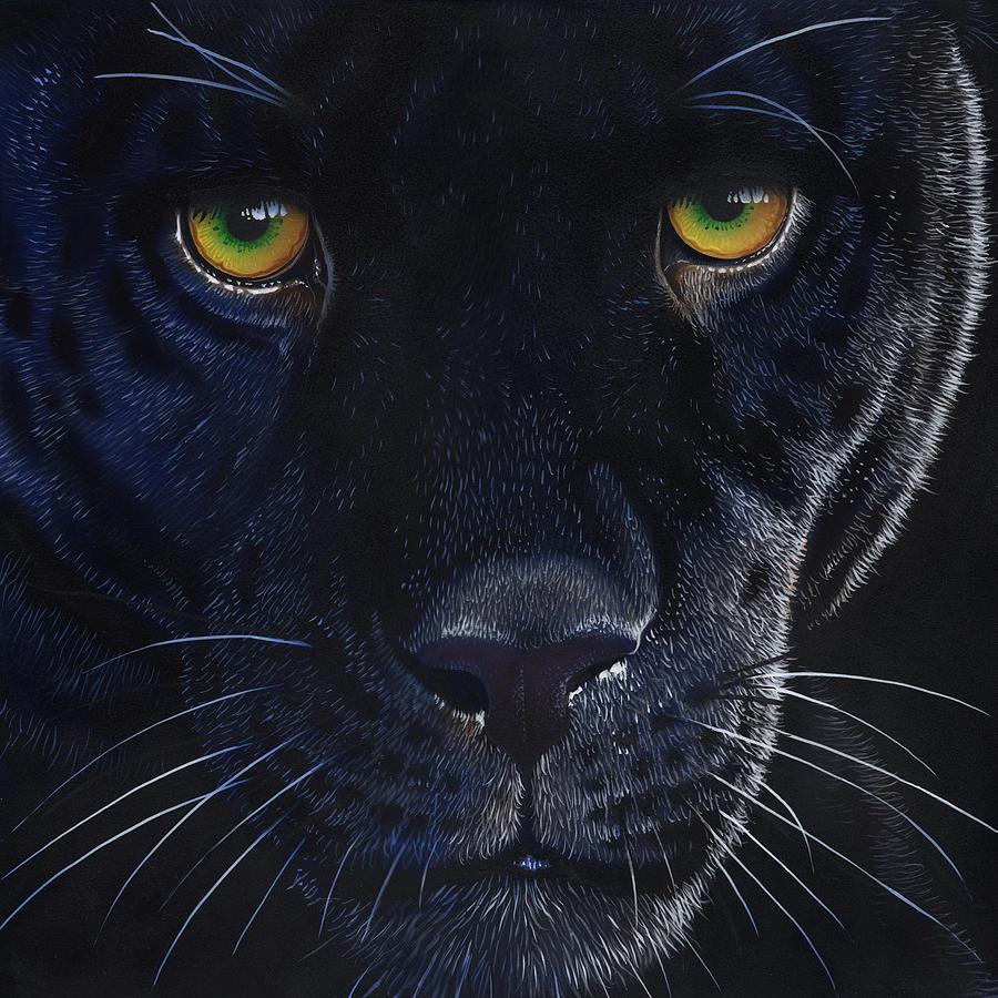 Black Leopard by Jurek Zamoyski - photo#38