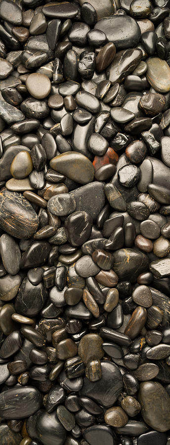 Black River Stones Portrait Photograph  - Black River Stones Portrait Fine Art Print