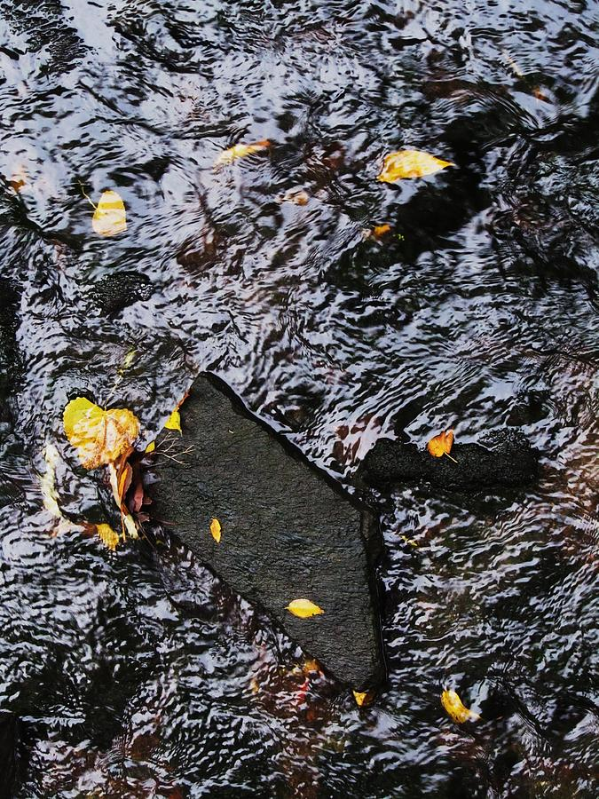 Black Rock Yellow Leaves Water Photograph - Black Rock At Graue Mill by Todd Sherlock
