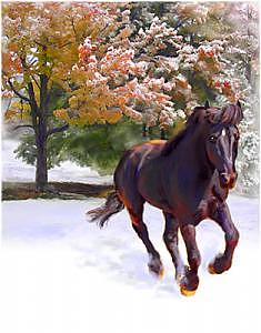 Black Stallion In Fall Snow Fantasy Art Painting