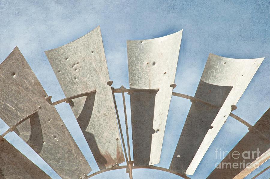 Blades - Texture Photograph