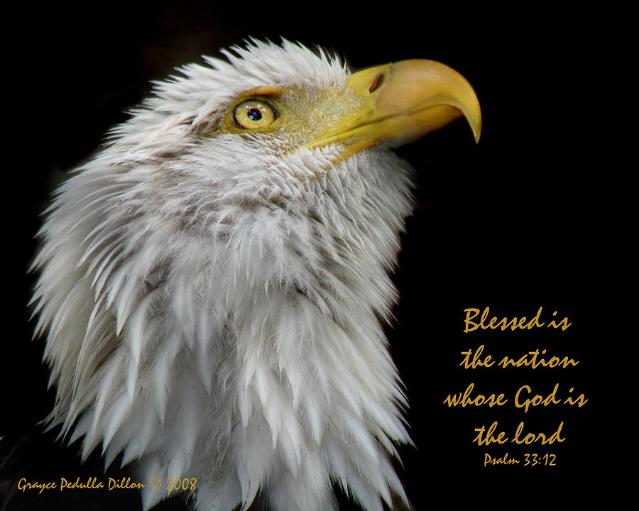 Eagle Photograph - Blessed Is The Nation by Grace Dillon